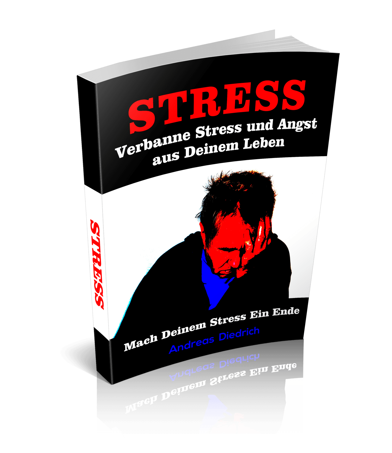 Ihr Gratis Erfolgs-Coaching + STRESS EBOOK RATGEBER-GESCHENK